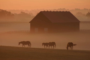 September Sunrise Behind Barn E